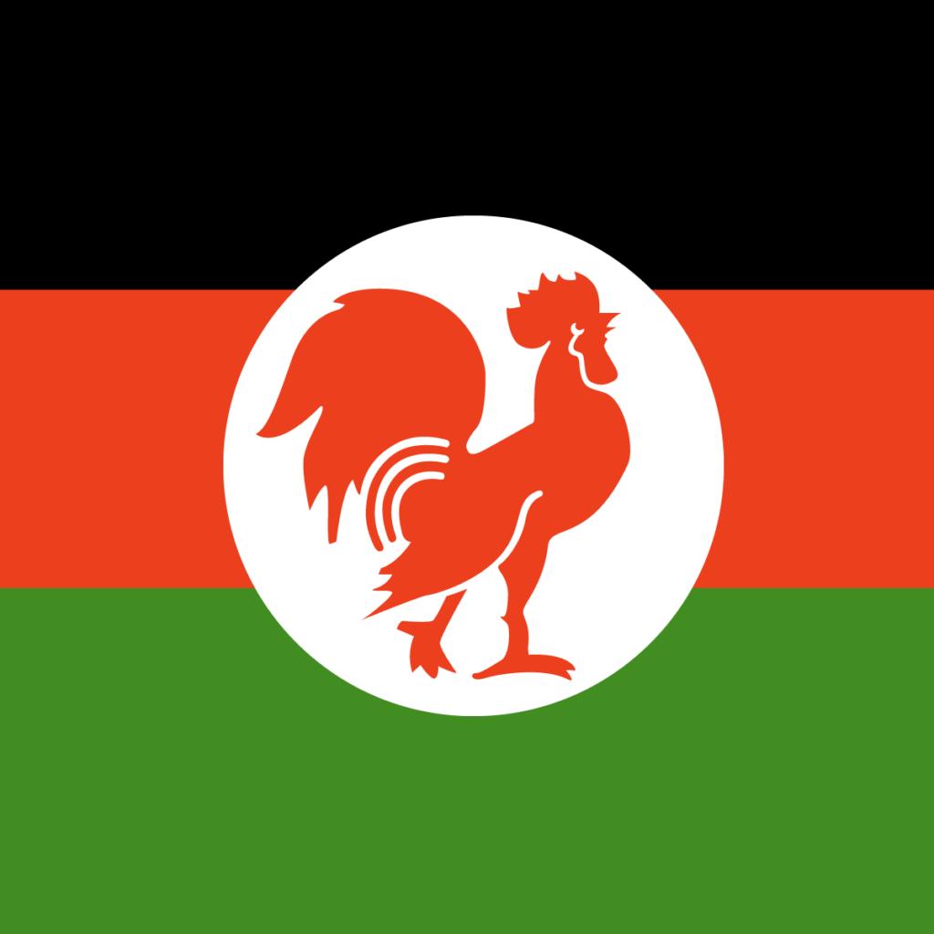 Flag of KANU (Kenya African National Union)
