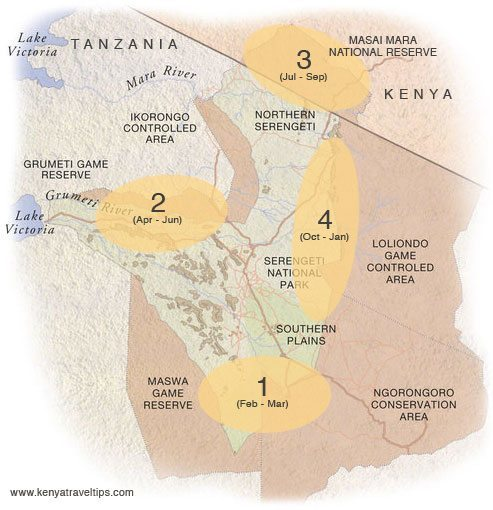 Serengeti - Mara Great Wildebeest Migration broad pattern map