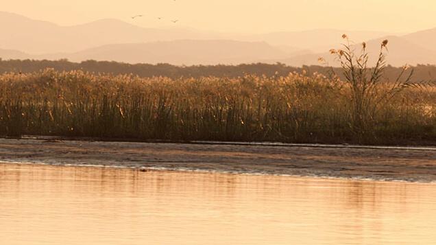 Lower Zambezi, Zambia